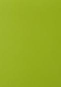 SM6907 嫩绿