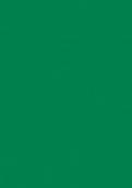 7897 青山绿