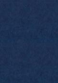 9271 牛仔蓝