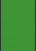 1266 亮绿色