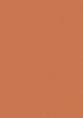 V4161 骆橙