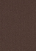 D5307 网织钛