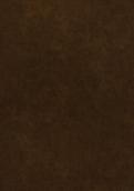 9365 铜彩金