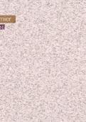 4621-20 白星石
