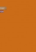 0340-20 菊橙