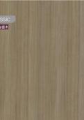 4151-60 郁金香木
