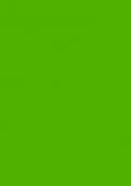 V6901 活跃绿